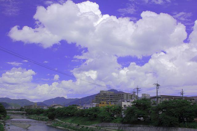 IMG_1369_3200.jpg